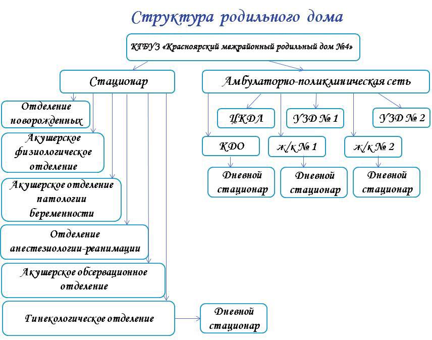 Схема родильного дома